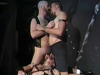 gay musculoso